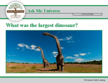 Ask Mr Universe: What was the largest Dinosaur?