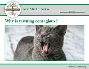 Ask Dr Universe: Why is yawning contagious?