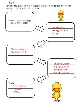 Ask and Answer Questions Including Steps in a Scientific Process