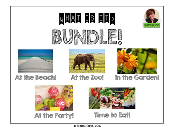 Asking Questions: What is it?  BUNDLE!