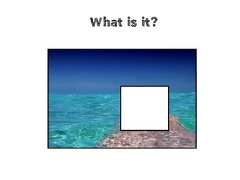Asking Questions: What is it? Beach