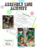 Assembly Line Activity!