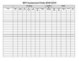 Assessment Data Collection Sheet