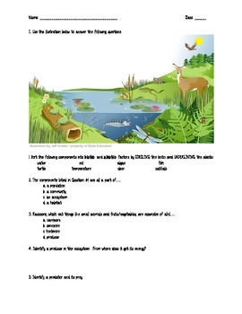 Assessment: Ecosystems Review/Quiz