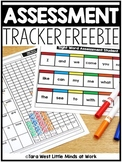 Assessment Mat & Tracker FREE + EDITABLE