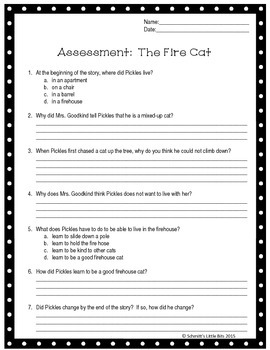 Assessment:  The Fire Cat
