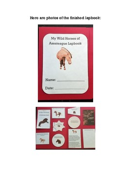 Asseteague Island Lapbook