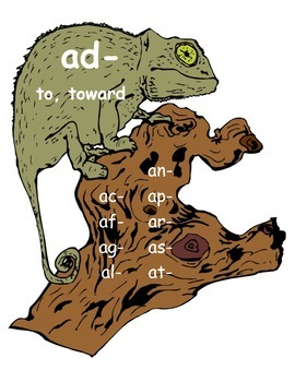 """Assimilated """"Chameleon"""" Prefix Posters"""