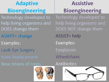 Assistive and Adaptive Bioengineering Anchor Chart