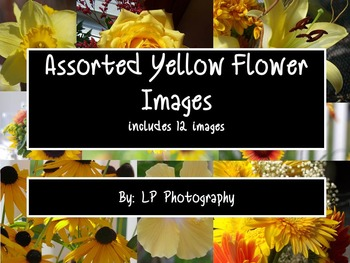 Assorted Yellow Flower Images  Personal & Commercial Use