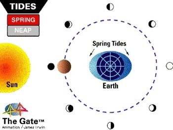 Astronomy - The Moon - Tides -  (POWERPOINT)