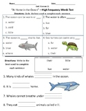 At Home in the Ocean - Vocabulary & Comprehension Test/Quiz (Journeys)