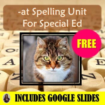 At Spelling Unit for Special Education with Lesson Plans