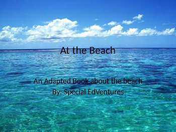 At The Beach: An Adapted Book