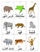 At The Zoo Flashcards