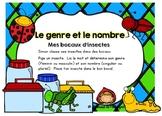 Atelier Le genre et le nombre (les insectes)