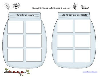 Ateliers coccinelles et insectes / bug activities