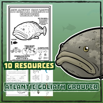 Atlantic Goliath Grouper -- 10 Resources -- Coloring Pages