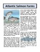 Atlantic Salmon Farms - Reading Comprehension and Substitute Plan