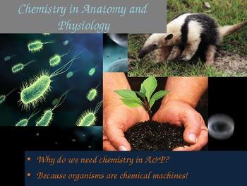 Atoms in Biology