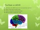 Attention Deficit/Hyperactivity Disorder and Cognitive Beh