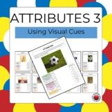Attributes 3 - Using Visual Cues