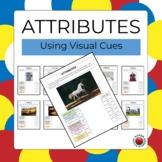 Attributes - Using Visual Cues