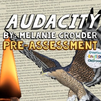 Audacity by Melanie Crowder -- Pre-reading Assessment ( FREE SAMPLE )