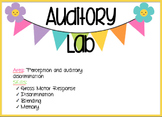 Auditory Discrimination Lab