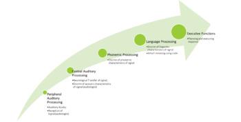 Auditory & Language Processing Continuum Visual
