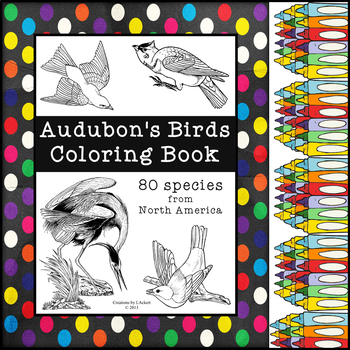 Audubon's Birds - Coloring Book (Includes: 80 North American Species)