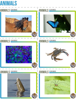 Augmented Reality 3-Dimensional Images - Animals