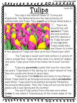 Close Reading: Plants & Flowers {Standards Based}