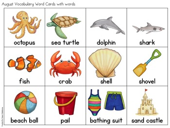 August Vocabulary {Vocabulary Cards, Mini-Reader, Activities}