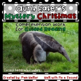 Aunt Eater's Mystery Christmas Comprehension Work (A Book Companion)