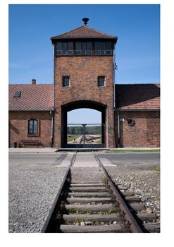 Auschwitz-Birkenau Word Search