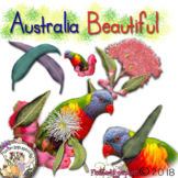 Australia Beautiful Series- Series 2 - Lorikeets and Eucalypts