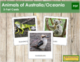 Animals of Australia/Oceania 3-Part Cards - Continent Cards