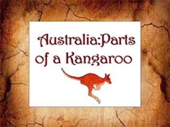 Australia: Parts of a Kangaroo
