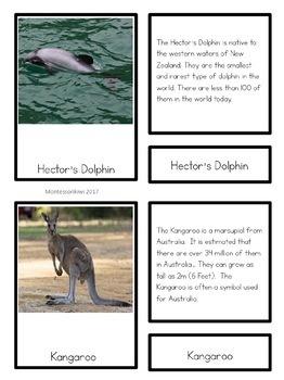 Australia and Oceania BUNDLE