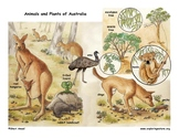 Australia's Animals and Habitats: Mini-Posters, Coloring and Labeling Bundle