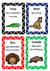 Australian Animal Action Game Cards Drama For The Junior Years