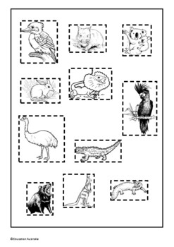 Australian Animal Coverings Sort - Feathers, Fur or Scales - Test