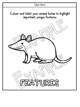 Australian Animal Flipbooks and Information Sheets