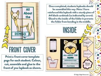 Australian Animal Lapbook and Fact Sheets