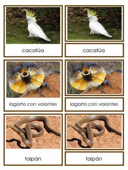 Australian Animals 3-part Cards in English and Spanish - Animales de Australia