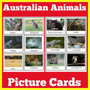 Australian Animals Unit
