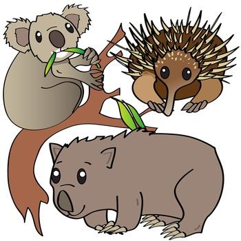 Australian Animals Clip Art by Studio Devanna | Teachers ...