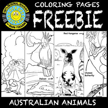 Australian Animals Colouring Pages   Brisbane Kids   350x350