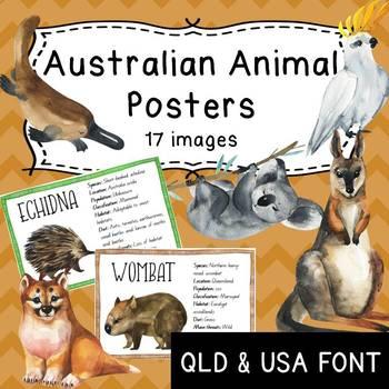 Australian Animal Information Posters - QBeginners (QLD) or USA Font